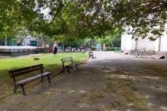 пейката2